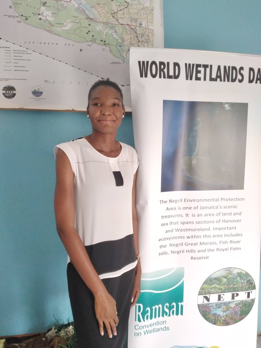Earth Today   Environmental NGO takes advocacy online   News - Jamaica Gleaner