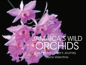 Jamaicas Orchids cover