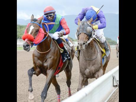 SUPERLUMINAL (left), with Omar Walker aboard,  wins the Alexander Hamilton Trophy by a short head from SARATOGA SIGHT (Aaron Chatrie) on February 2.