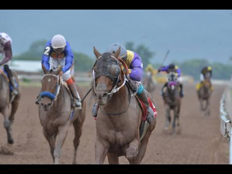 SARATOGA SIGHT (right) battles BRUCE WAYNE all the way to the finish line to claim the Reynold Gonzalves Memorial Cup at Caymanas Park during Labour Day horse racing. He was ridden by Christopher Mamdeen.