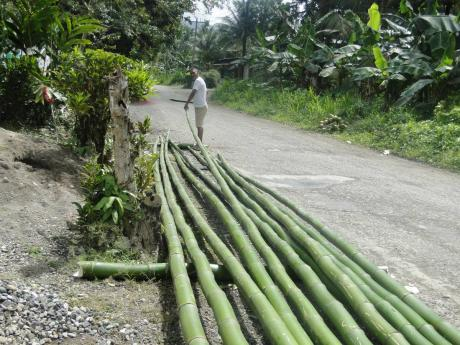 Eleven bamboo stalks measuring 34 feet are needed.