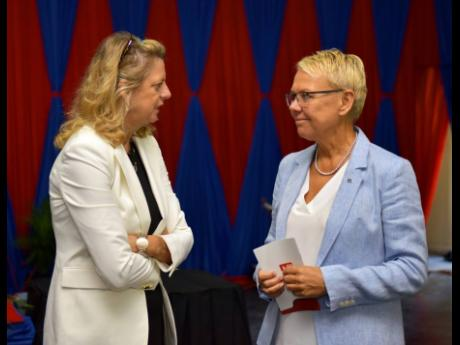 Head of the European Union Delegation  Malgorzata Wasilewska