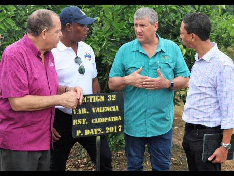 Peter McConnell (third right), managing director of Trade Winds Citrus Limited, explains the progress made in fighting the citrus greening disease, which has affected the orange orchards, to Agriculture Minister Audley Shaw;  Peter Thompson, head of the Rural Agricultural Development Authority; and David Martin, deputy vice-president of the Jamaica Manufacturers and Exporters' Association.