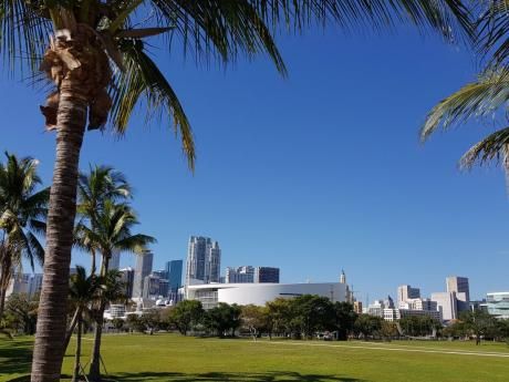 Museum Park view from PAMM, looking across to Philip and Patricia Frost Museum of Science on the far left.