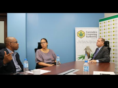 Industry, Commerce, Agriculture and Fisheries Minister Audley Shaw (right) pays keen attention to Chief Executive Officer of the Cannabis Licensing Authority (CLA) Lincoln Allen as he gives an update on the operations of the CLA during a tour of the agency's new location at the PanJam Building in New Kingston on August 2. Looking on is Hyacinth Lightbourne, CLA chairman.