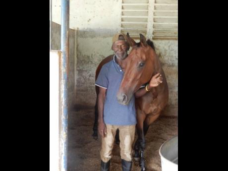 Groom Wesley Hewitt pictured with VICTORY TURN, one of the young horses in his care, at the stables at Caymanas Park on Friday.