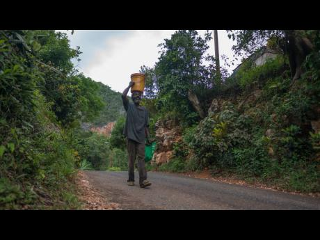 A farmer travels along a lonely road in Comfort Hall, located in the Cockpit Country, Trelawny. It is believed that bauxite mining will disrupt farming practices of residents in the future.