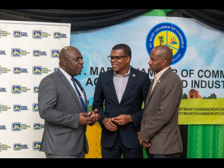 From left: Frederick Young, president of the St Mary Chamber of Commerce, makes a point to Dr Ransford Davidson, business relationship and sales manager, JN Bank, and Lloyd Distant Jr, president of the Jamaica Chamber of Commerce, following a luncheon hosted by the St Mary Chamber at the Casa Maria Hotel recently.