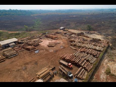 AP In this September 2, 2019 file photo, logs are stacked at a lumber mill surrounded by recently charred and deforested fields near Porto Velho, Rondonia state, Brazil. Dozens of Brazilian corporations are calling for a crackdown on illegal logging in the