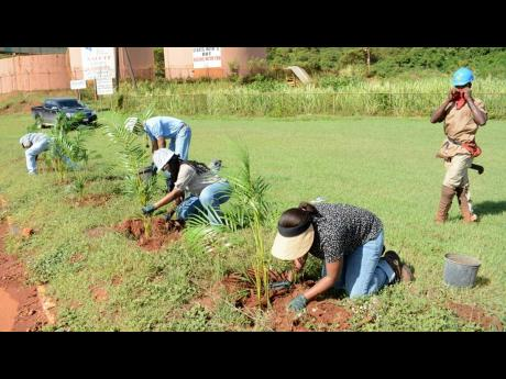 Noranda Bauxite employees participating in the National Tree Planting Day activities at the company's premises in Discovery Bay, St Ann.