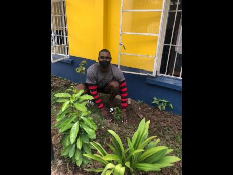 Emmanuel Orane planting a tree