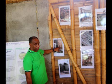 In this file photo, Gladstone Rose of the Bureau of Standards Jamaica makes a point about the use of bamboo.