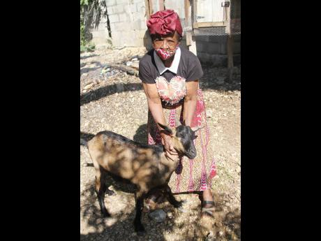 Clarendon senior Linda Harris is very active at home and in her community. Here she tends one of her goats while donning an outfit made by her.