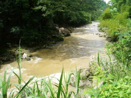 Rio Cobre flows through the gorge.