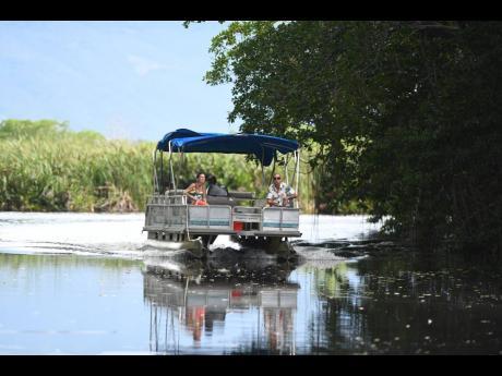 Tourists being taken on a tour of the Black River Safari.