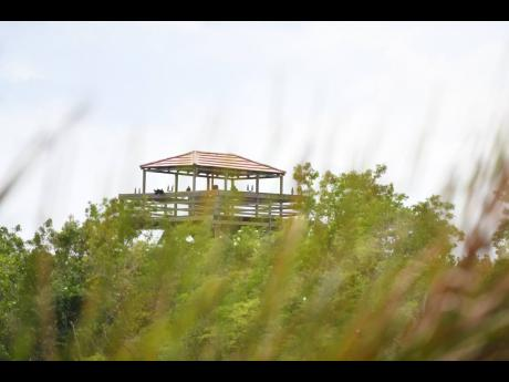 A structure built on the wetlands in the Black River which has many residents worried about the effects it may have on the area.