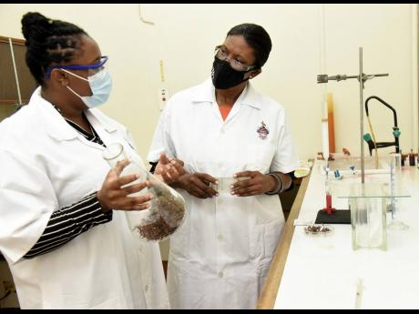 Winklett Gallimore (right) and Doleasha Davis are continuing research into sargassum, the pesky seaweed that has been clogging some northern Jamaica beaches in recent years.