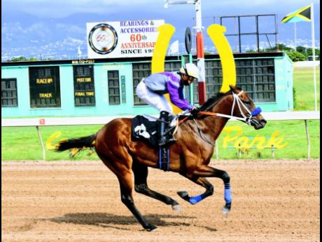 PAPITO ridden by Dick Cardenas wins the fourth race at Caymanas Park, on Saturday, December 5, 2020.