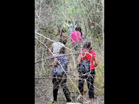 Volunteers scour heavily vegetated area in Sandy Bay, Clarendon, on Wednesday in search of missing schoolteacher Nattalie Dawkins. The Clarendon woman was last seen on March 30.