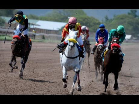 Natalie Berger (centre), aboard PaintThisTownRed, on her way to victory at Caymanas Park on Saturday, April 20, 2019.