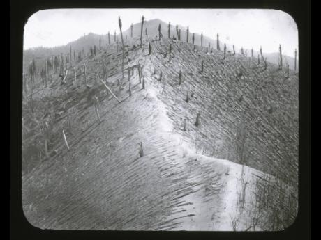 In this 1902 photo provided by York Museums Trust, the seared landscape is seen following the eruptions of La Soufrière, a volcano on the island of St Vincent in the Caribbean.