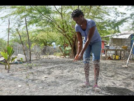 Renea Bowen, a fisherwoman who lives on Cow Bay beach, mends a fish pot.