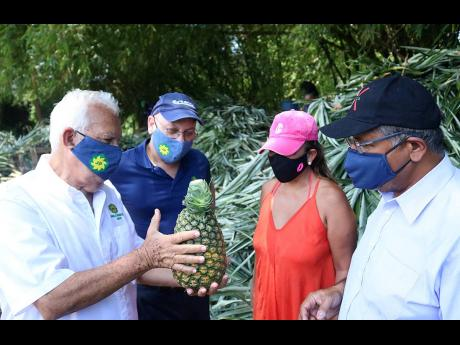 Jamaica Producers Group Chairman Charles Johnston (left) shows off a special, freshly picked pineapple, ready for sampling, during British High Commissioner to Jamaica Asif Ahmad (right) and Kim Del Mundo (second right) tour of the JP St Mary's Farms in