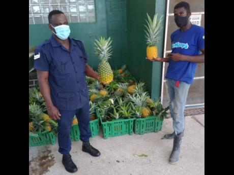 Corporal Bennett (left) of the Richmond Farm Correctional Centre accepts the nutrient-filled JP St Mary's pineapples from Oneil Williams on behalf of the staff at the Correctional Centre last Friday. The donation by JP St Mary's is part of an overall i