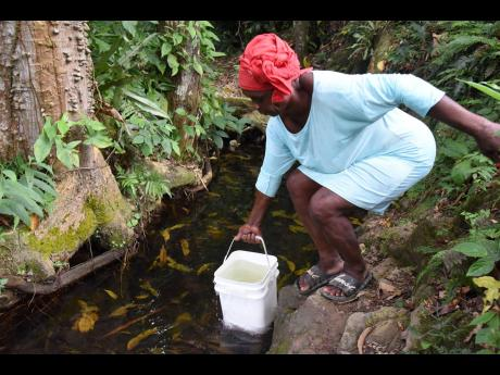 Hyacinth Reid fills a bucket with water from a stream in Gully Road community of Mendez in St Catherine,