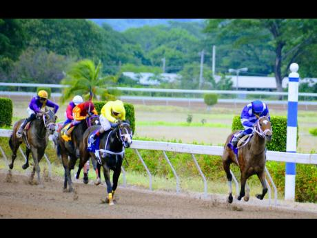 Nipster (right), ridden by Robert Halledeen, wins the St Cecelia Cup at Caymanas Park yesterday.