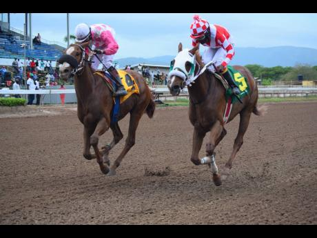 Miniature Man (left), ridden by Dick Cardenas, and Further and Beyond, ridden by Dane Nelson, finish in a dead heat in the Kingston Trophy at Caymanas Park in Kingston on Saturday, May 8, 2021.