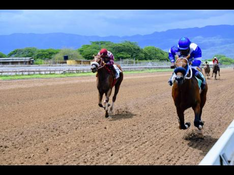 NUCLEAR NOON (right), ridden by Robert Halledeen, wins the seventh race over six furlongs at Caymanas Park on Saturday, April 24.