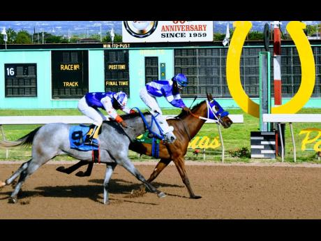 SURE CURLIN (right), ridden by Robert Halledeen, wins the seventh race over UNWRITTEN LAW (Aaron Chatrie) at Caymanas Park on Friday, January 1.