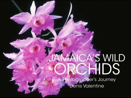 'Jamaica's Wild Orchids' cover.