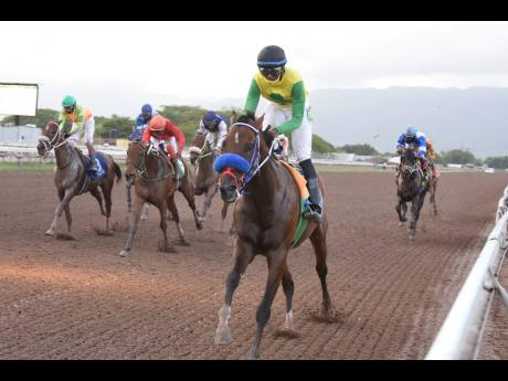 Father Patrick, with Omar Walker aboard, at Caymanas Park on Saturday, August 1, 2020.