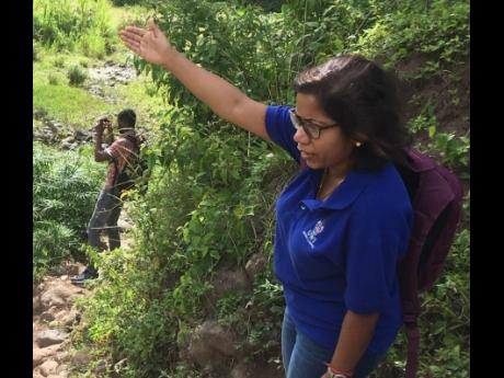 File  Hydrologist Dr Arpita Mandal of The University of the West Indies.