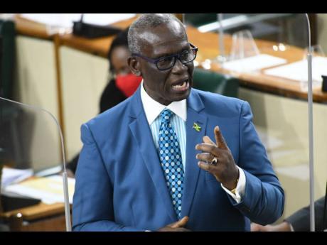 Local Government Minister Desmond McKenzie.