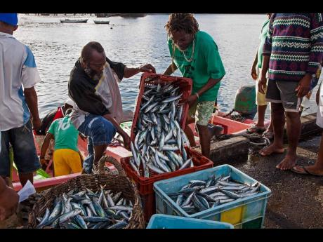 It is said that national fisheries policies in the major fishing nations, such as USA, European Union, Japan, South Korea, Taiwan, Thailand, Russia, and China, contribute to the overexploitation of marine fish stocks.
