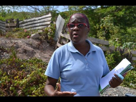Antoinette Stewart, member of the Ten Miles Bucket Brigade.