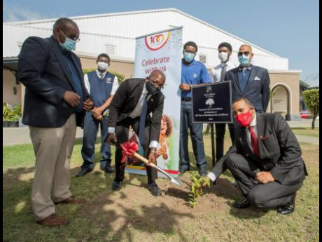 Pearnel Charles Jr (third left), minister of housing, urban renewal, environment & climate change, and Nigel Holness (right), managing director, CIBC FirstCaribbean, prepare to plant a tree at Jamaica College (JC) on June 17.  Looking on are (from left) th