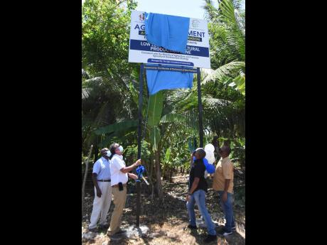 Member of Parliament for West Portland Daryl Vaz (second right) and Minister of Agriculture and Fisheries Floyd Green unveil the sign to mark the Low Layton Agricultural Production Zone in Lennox, Portland. At left is Dr Al Powell, head of AIC, and at righ