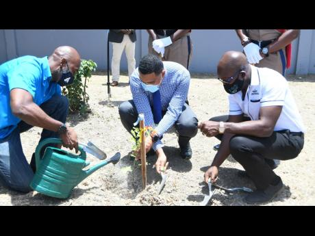 Prime Minister Andrew Holness (centre) plants a tree at his alma mater, St Catherine High School, last Friday, while Pearnel Charles Jr (right), minister of housing, urban renewal, environment and climate change, and Ainsley Henry, CEO and conservator of f