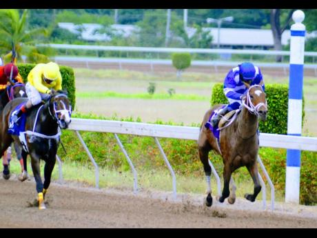 TREVOR'S CHOICE (left) placing second to NIPSTER in the Saint Cecelia Cup on May 15 at Caymanas Park.