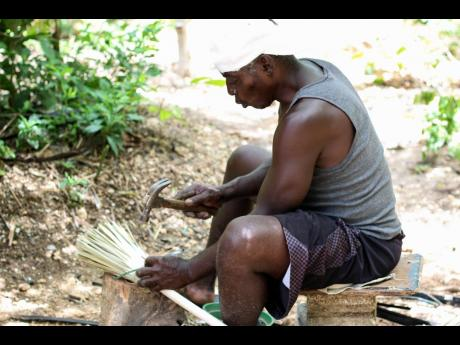 Wayne Michael Irving is playing his part in Canaan Heights, by teaching youth the technique of broom-making and the significance to Jamaica's culture. He sits here with yard brooms made with bull thatch.