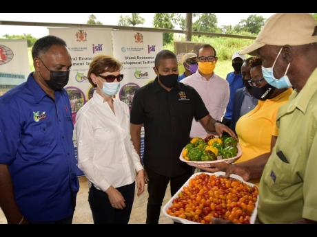Minister of Agriculture and Fisheries Floyd Green (third left) looks at sweet peppers and cherry tomatoes being shown by farmers Kerise Mighty (second right) and Charles Townsend (right), during a tour of the Greenhouse Cluster and Water Harvesting Project