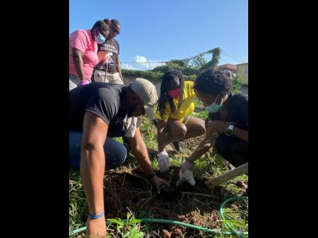 Director of Community Service, Natasha Burnett (right) receives assistance from Director, Membership Engagement, Romond Nesbeth (left) and club Secretary Anucha Pryce as they plant the first seedling of the day. Deputies Peter-Gaye Bromfield and Daniel Ker