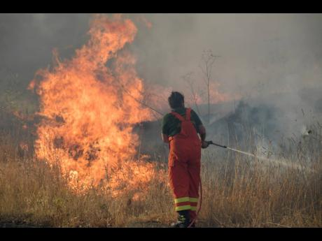 Volunteers try to control fire in the municipality of Blufi, in the upper Madonie, near Palermo, Sicily, as  many wildfires continue plaguing the region. Sicily, Sardinia, Calabria and also central Italy, where temperatures are expected to reach record hig
