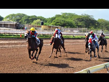UNIVERSAL BOSS (left), ridden by Linton Steadman, wins the eighth race at Caymanas Park on Saturday.