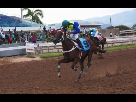 SOLID APPROACH, ridden by Omar Walker, wins the third race over 1400 metres at Caymanas Park on Sunday, March 14.