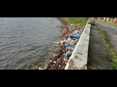 A section of the mini park in Portland shows a pile-up of garbage along the shoreline.